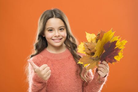 Any weather is good. thumb up. fall season. fallen leaves. girl child in sweater. Autumn mood. happy small girl with maple leaf. school time. childhood happiness. autumn kid fashion. Weather change. Imagens