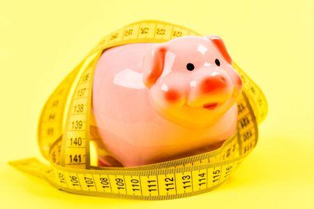 Mierz koszty. Zadłużenie kredytowe. Skarbonka i taśma miernicza. Koncepcja limitu budżetu. Ekonomia i finanse. Pułapka na świnie. Kryzys budżetowy. Planowanie budżetu. Problem biznesowy. Ograniczone lub ograniczone