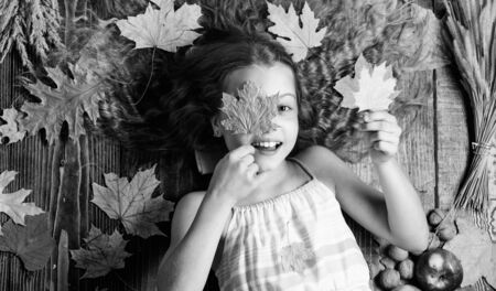 Play fall season leisure attributes. Kid cute girl play with leaves wooden background top view. Child long hair play with dry leaves. Autumn coziness is just around. Child playful mood hold leaves