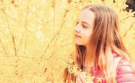 summer nature. happy child with yellow bush bloom. little girl smell blooming flowers. Natural beauty. Childhood happiness. Spring holiday. Womens day. Spring holidays. copy space