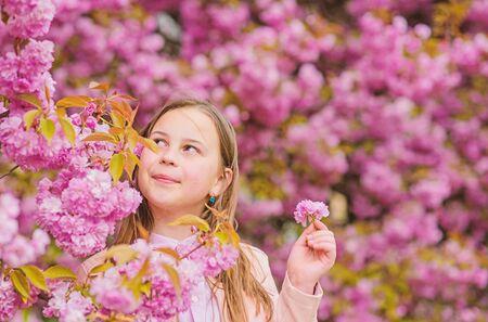 Pollen allergy concept. Kid enjoy cherry blossom sakura. Kid on pink flowers sakura tree background. Allergy remedy. Child enjoy life without allergy. Sniffing flowers. Girl enjoying floral aroma Standard-Bild - 129253663