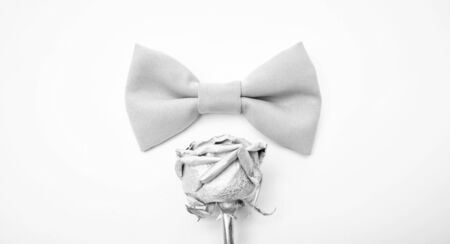 Esthete detail. Fix bow tie. Groom wedding. Tying bow tie. Textile fabric bow close up. Modern formal style. Menswear clothes. Perfect outfit. Wedding accessories. Fashion accessory