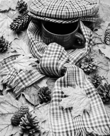 Warming beverage. Hot drink for autumnal walk. Mug drink and checkered scarf and kepi. Mug of tea covered with hat and surrounded by scarf autumnal background with fallen maple leaves and fir cones.