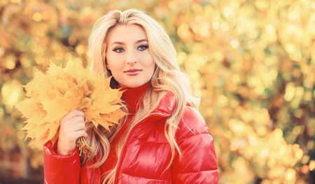 Lady posing with leaves autumnal nature background. Girl blonde makeup dreamy face hold bunch fallen maple yellow leaves. Autumnal bouquet concept. Woman spend pleasant time in autumnal park