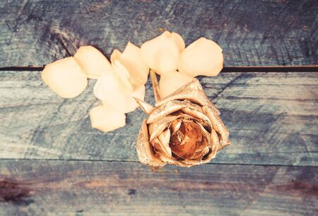golden flower on wooden background. flower shop decor. wealth and richness. floristics business. Vintage and jewelry. luxury and success. metallized decor. antique concept. natural beauty. Gold rose. Standard-Bild - 129435656