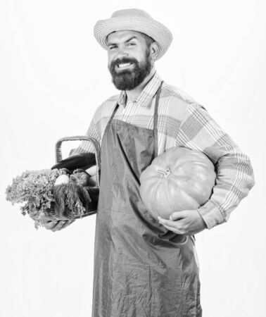Farmer lifestyle professional occupation. Farming and agriculture. Farmer wear apron hold pumpkin white background. Agriculture concept. Locally grown foods. Farmer guy carry big pumpkin. Local farm