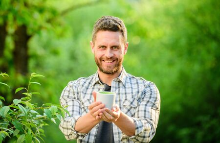 I prefer green tea. Refreshing drink. Man bearded tea farmer hold mug nature background. Green tea plantation. Whole leaf tea. Pleasant moment of self care. Natural drink. Healthy lifestyle Stok Fotoğraf