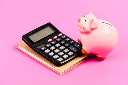 Calculate profit. Piggy bank pink pig and calculator. Economics and finance. Credit concept. Money saving. Save money. Banking account. Earn money salary. Money budget planning. Financial wellbeing. Imagens