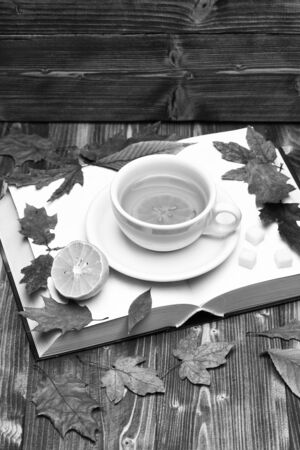 Cup of tea with autumn leaves background on wooden table
