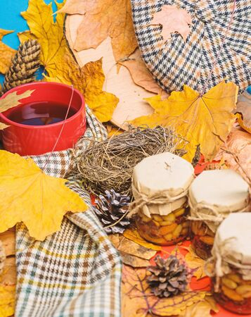 Hat scarf and honey natural sweets in jars near mug of tea background covered fallen leaves. Natural homemade treats autumn season keep healthy. Autumnal beverage with homemade natural sweets