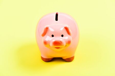 Piggy bank symbol of money savings. More ideas for your money. Piggy bank adorable pink pig close up. Accounting and family budget. Finances and investments bank. Bank deposit. Financial education