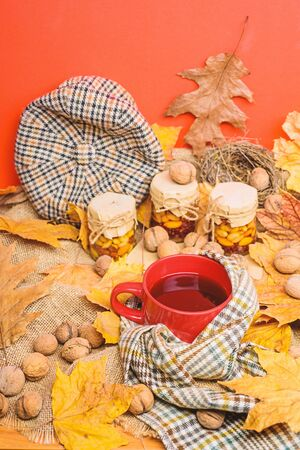 Fall season to do list concept. Mug cozy aromatic tea beverage in scarf and treats. Mug of tea surrounded by scarf red background with fallen maple leaves and walnuts. Cozy autumnal atmosphere.
