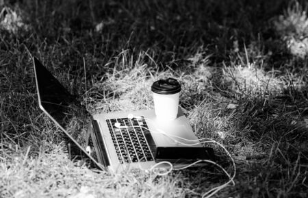 notebook with headset of mobile phone and coffee to go on green grass. working place outdoor. Free music. agile business. Online study. summer vibes. Relax. university students life. Online shopping.