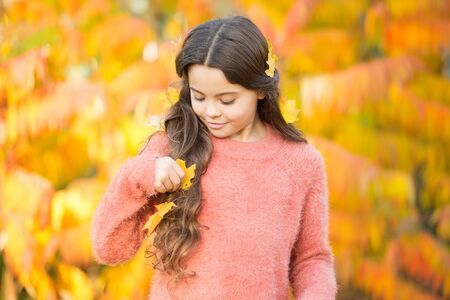 First signs of autumn. Small child wear autumn leaves in hair. Autumn beauty. Give your hair a seasonal reboot. Golden autumn. Fall colors 写真素材