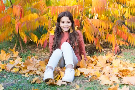 Sunny weekend. Autumn warm. Stylish smiling girl in a autumn park. Fallen leaves. Autumn nature. Happy small kid outdoors play with leaves. Girl sit relaxing in park sunny day. Beautiful season