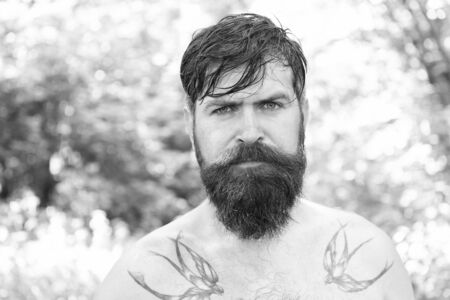 Amazing tattoo. Bearded man with permanent ink tattoo pictures. Caucasian guy shirtless with swallow tattoo on shoulders. Brutal hipster with tattoo covering skin Reklamní fotografie
