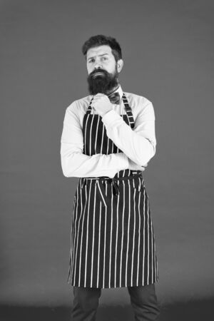 The apron is just part of my kit. Stylish waiter in elegant bow tie and bib apron. Bearded man wearing cooking apron. Cook with long beard in striped kitchen apron