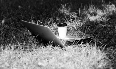 Coffee break outdoors. Summer park. Work and relax in natural environment. Green office. Its coffee time. Coffee take away. Laptop modern smartphone with earphones and coffee cup on green grass Stock fotó - 133829924