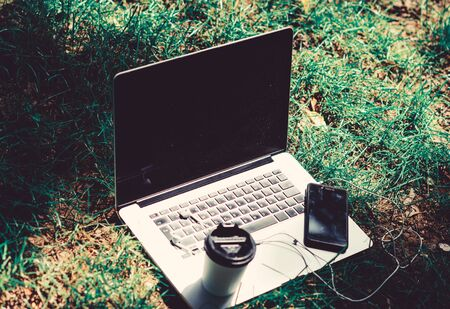 agile business. Online study. working place outdoor. Free music. summer vibes. Relax. notebook with headset of mobile phone and coffee to go on green grass. university students life. Online shopping. Stock fotó - 133829368