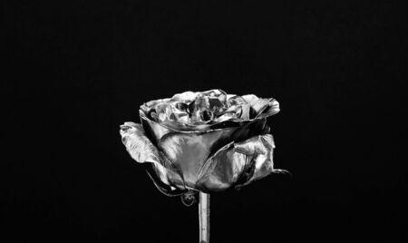 floristics business. Vintage and jewelry. luxury and success. metallized decoration. antique concept. wealth and richness. natural beauty. Gold rose. golden flower. flower shop decor. retirement. Foto de archivo - 134436019
