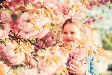 Sakura tree blooming. Park and garden. Girl little child in spring flower bloom. Enjoy smell of tender bloom sunny day. Sakura flower concept. Gorgeous flower beauty. Girl cherry flower background