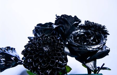 Eternal beauty. Botany concept. Forging and sculpture. Beautiful black silver flower. Floral shop. Metallic steel color. Flower covered metallic paint close up. Metal flower. Abstract art