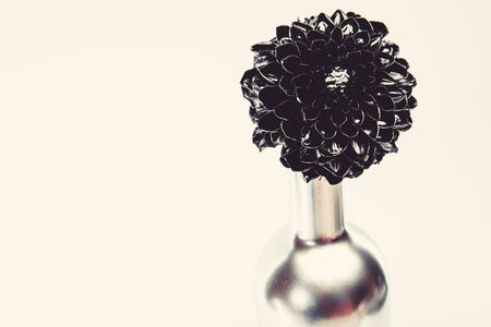 grunge beauty isolated on white. wealth and richness. floristics business. Decoration elements for Christmas. luxury and success. metallized antique decor. black chrysanthemum flower in silver bottle. Stock Photo