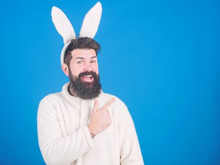 Presenting your product. Easter hare pointing finger aside. Bearded man in rabbit costume. Hipster wearing long rabbit ears for Easter party. Easter bunny is spring symbol of fertility, copy space