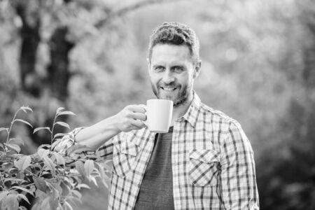 Green tea plantation. Whole leaf tea. Excellent taste. Enjoy hot beverage. Natural drink. Healthy lifestyle. I prefer green tea. Refreshing drink. Man bearded tea farmer hold mug nature background Stock fotó