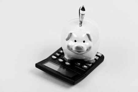 Analyzing sales pitch. annual income. saving money. First salary. bookkeeping. financial report. family budget management. business startup. Working with numbers. piggy bank with calculator. Moneybox.