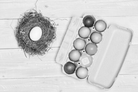 Egg hunt. painted eggs in egg tray. Spring holiday. Holiday celebration, preparation. New life in straw nest. Healthy and happy holiday. Happy easter. Ester bunny hunt begins.