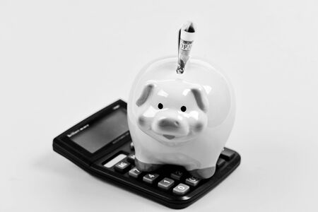 calculation of annual income. saving money. First salary. piggy bank with calculator. Moneybox. family budget. business startup. Working with numbers. bookkeeping. financial report. clean money