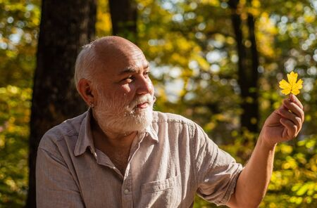 Keep cheerfulness. Pensioner hiking in forest on sunny autumn day. Happy man enjoy autumn nature. Old bearded man collect leaves. Bearded grandfather relaxing in forest. See beauty in simple things