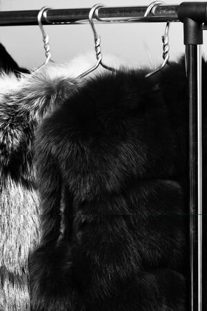 fashionable luxurious waist coats of fur hanging on rack on golden hangers on blue studio background, close up
