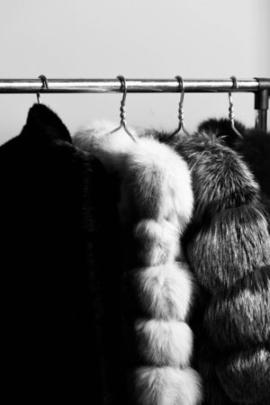 fashionable luxurious waist coats of fur hanging on rack on golden hangers on blue studio background