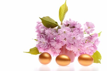Trio of golden painted eggs for Easter decoration with pink bunch of sakura isolated on white background, copy space. Spring and holiday