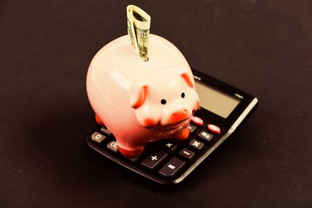 piggy bank with calculator. Moneybox. bookkeeping. financial report. family budget management. business start up. Working with numbers. calculation of annual income. saving money. First salary.