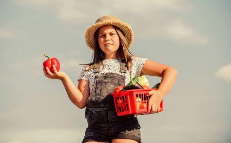 Kid work at farm. Harvest season. Child carry harvest. Buy organic food. Sunny day at farm. Vegetables in basket. Little helper concept. Ripe veggies. Family farm. Girl adorable child farming Фото со стока