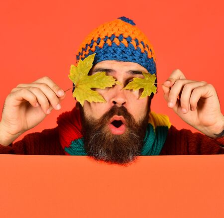October and November time idea. Autumn and cold weather concept. Man in hat holds green maple tree leaves on orange background, copy space. Hipster with beard and surprised face closes eyes with leaf