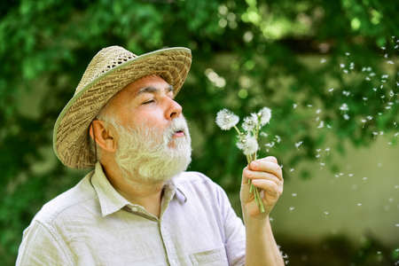 Tranquility and serenity. Harmony of soul. Elderly man in straw summer hat. Lonely grandpa blowing dandelion seeds in park. Mental health. Happy and carefree retirement. Peace of mind. Peacefulness 版權商用圖片