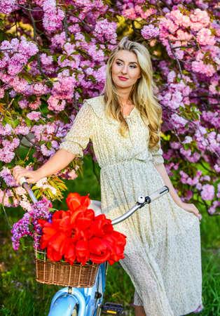 Spring holidays. Tourism concept. Transportation and travel. Sakura season. Flora and botany. Woman with tulips bouquet. Sakura tree blooming. Girl casual dress retro cruiser bicycle sakura tree