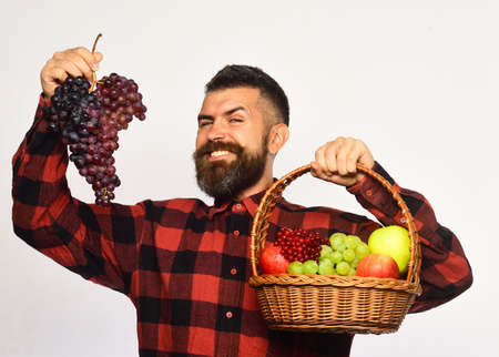 Farmer with happy face presents apples, cranberries and ripe grapes Archivio Fotografico