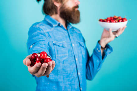 man holding ripe sweet cherries.