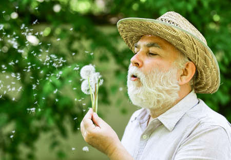 Enjoying summer rest. symbol of thin gray hair. old man blow dandelion flower. Alzheimer dementia. concept of cognitive impairment. Joy during early spring. old age and aging. spring village country Imagens