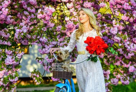 Flora and botany. Woman with tulips bouquet. Sakura tree blooming. Girl retro cruiser bicycle cute puppy dog sakura tree. Tourism concept. Spring holidays. Transportation and travel. Sakura season