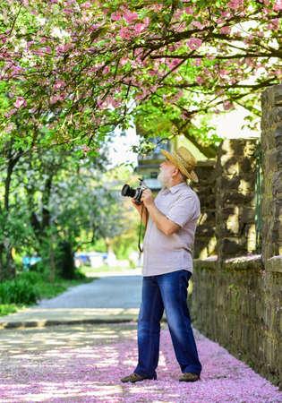 traveler camera man under sakura bloom garden. 版權商用圖片 - 154695614