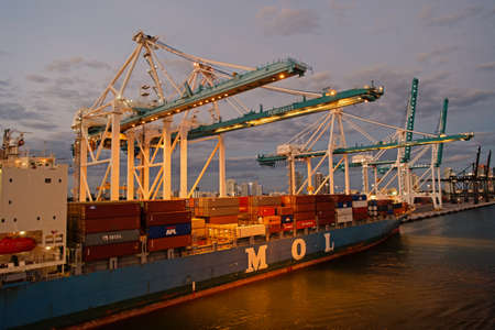 Miami, USA - March 01, 2016: MOL vessel in evening port. Container vessel. Containership and cranes lighting. Feeder vessel. Marine vessel. Harbor or non-port floating facility. Maritime transport