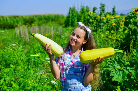 Taking care of nature. small girl farming in summer farm. happy childrens day. childhood happiness. portrait of happy kid with vegetable marrow. cheerful retro child hold big marrow squash