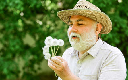 You are so beautiful. Joy during early spring. old age and aging. spring village country. symbol of thin gray hair. old man blow dandelion flower. Alzheimer dementia. concept of cognitive impairment