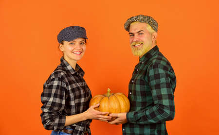 Farmers market. Autumn mood. Couple in love checkered rustic outfit hold pumpkin. Autumn routines. Farmer family concept. Harvesting season. Autumn harvesting works. Work at fields. Harvest festival